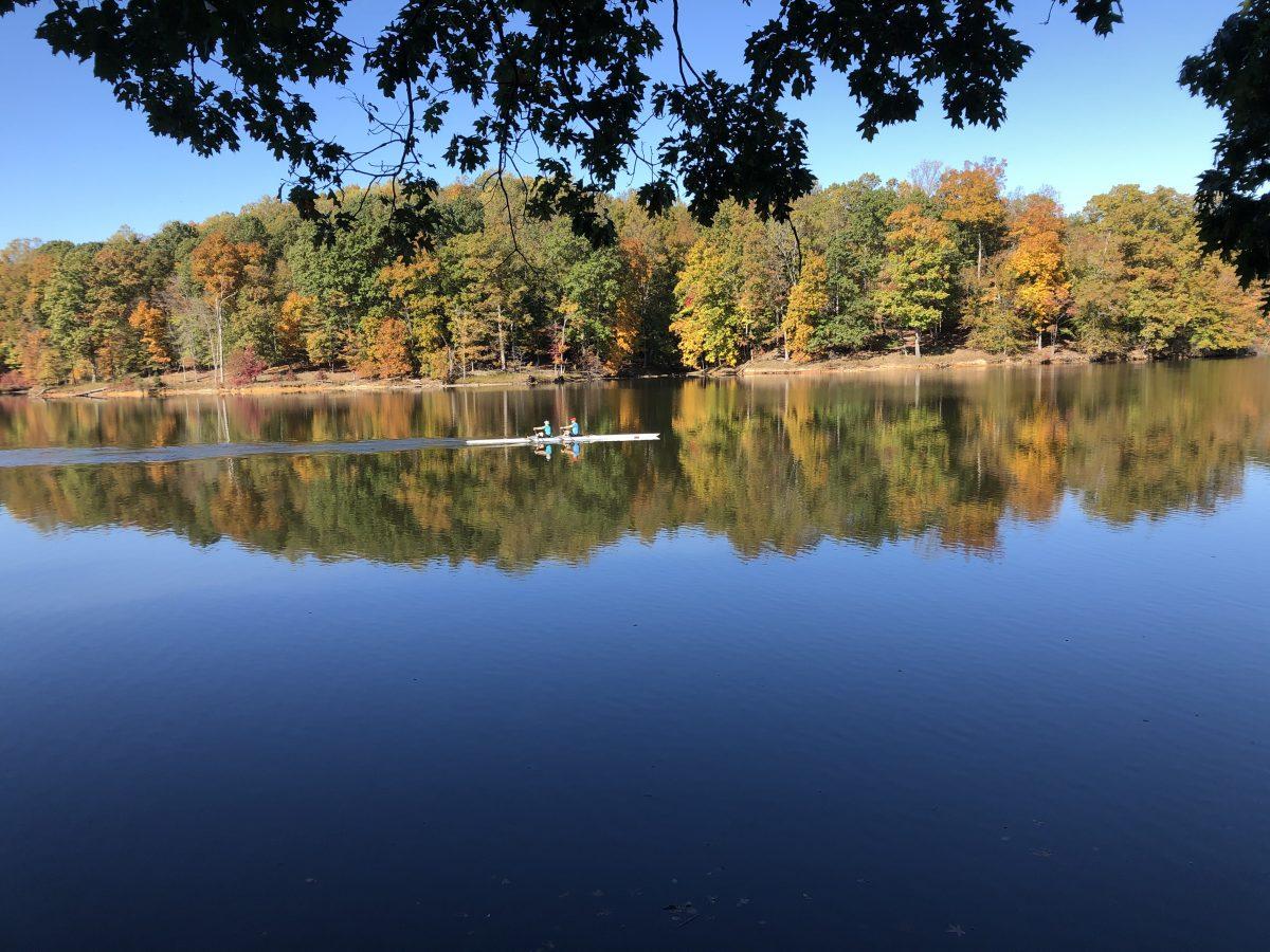 In Lake Ridge, Va., a planned community comes into its leafy glory
